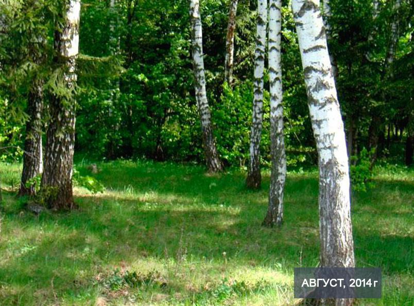 Коттеджный посёлок  «Южный причал» по адресу Московская обл, Чеховский р-н, Сенино д в 55.3км от МКАД предложения по цене от 318 000 руб.