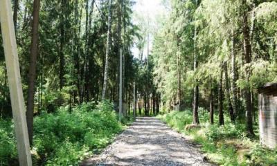 Фото коттеджного посёлока Лесной родник